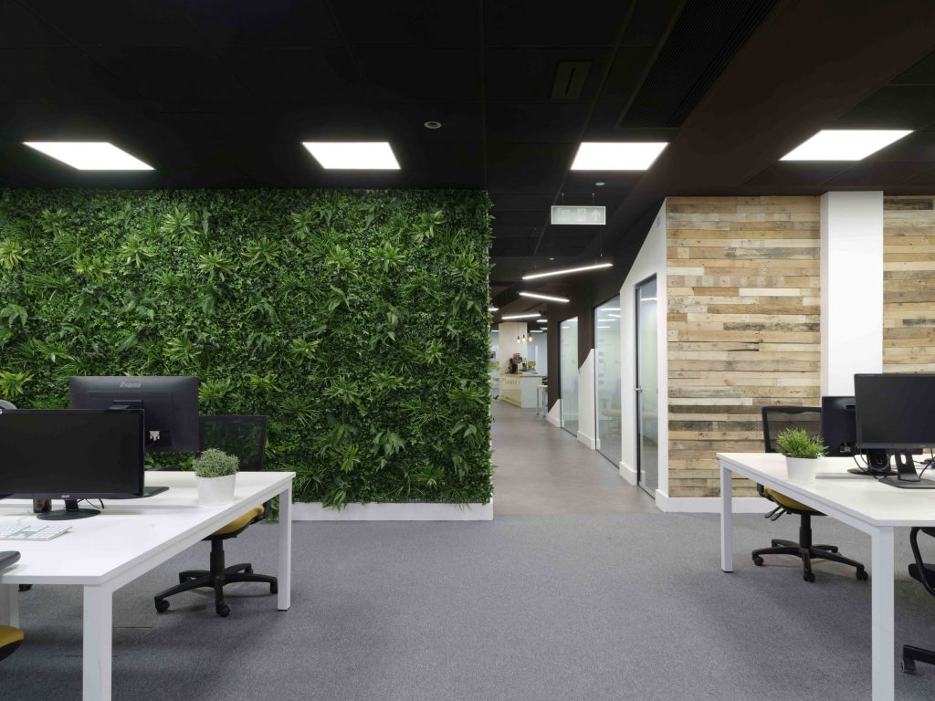Biophilic living wall design within an office.